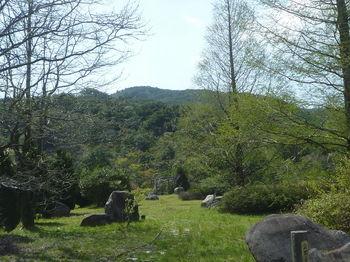 P1320932公園.JPG