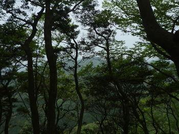 P1330010鋤尖山.JPG