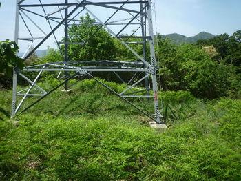 P1330313鉄塔.JPG
