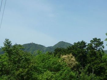 P1330314市四熊ヶ岳.JPG