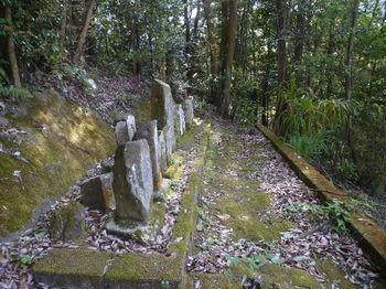 P1330436古墓.JPG