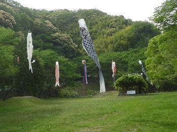 P1330443河川公園.JPG
