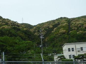 P1330448駐車地から鉄塔②.JPG