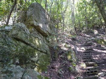 P1330572 1300段・岩(逆方向).JPG