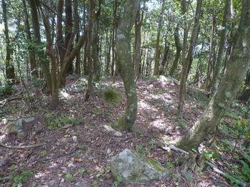 P1330686神宮山山頂(最高所).JPG