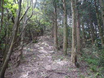 P1330704植林境・上り.JPG