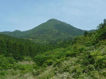 P1330779神宮山.JPG