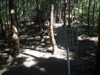 P1330797鞍部・公社造林看板.JPG