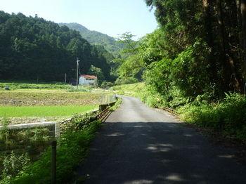 P1330903コン橋.JPG