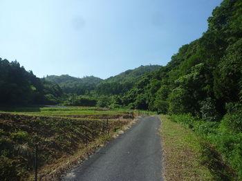 P1340094耕地沿い.JPG