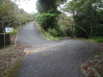 P1340543国清山分岐・自然歩道看板.JPG