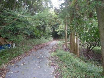 P1340552舗装林道合流点.JPG