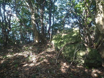 P1340756290mピーク・小岩.JPG