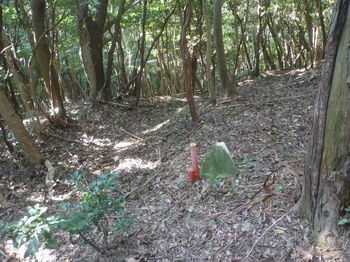 P1340790境界石(左).JPG