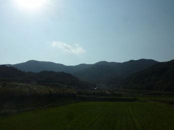 P1340836県道から小倉ヶ辻・298mピーク.JPG