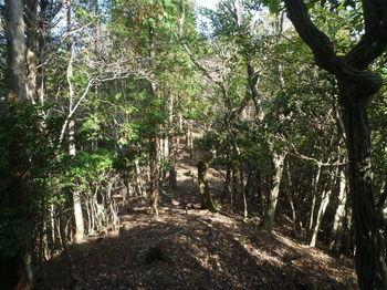 P1340961植林境.JPG
