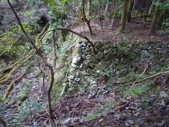 P1350062対岸の石垣.JPG