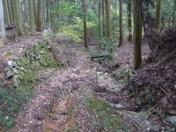 P1350066石垣沿いの山道.JPG
