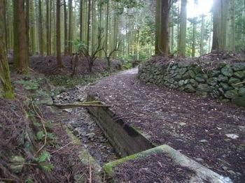 P1350075林道(湯の原ダム方向).JPG