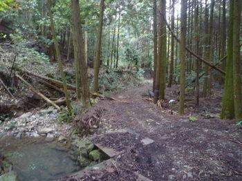 P1350076林道(中山渓方向).JPG