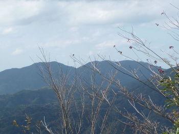 P1350137鳴滝山・水上山.JPG