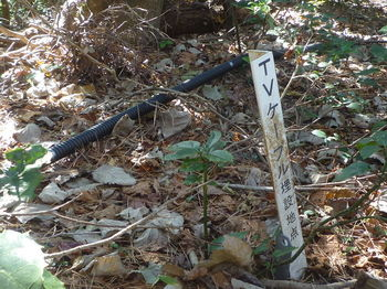 P1350251ケーブル埋設地点表示.JPG