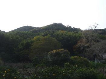 P1350295寺下から天狗山方向.JPG