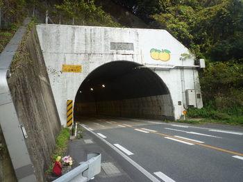 P1350301玉江墜道.JPG