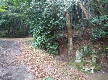P1350318舗装林道出合い・古墓.JPG