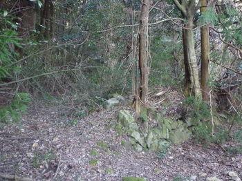 P1350783耕作地跡の石垣.JPG