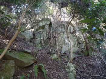 P1350799谷上部の岩崖.JPG