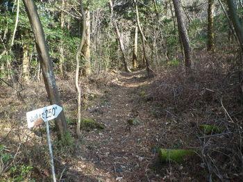 P1350824「山頂まで250m」道標.JPG