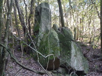 P1350906奇岩.JPG