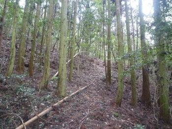 P1350918山道.JPG