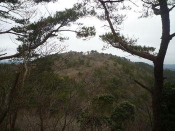 P1350987大将軍より烏帽子岳山頂.JPG