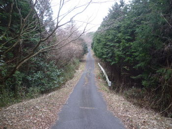 P1360009舗装林道.JPG