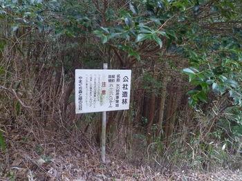 P1360010公社造林看板.JPG