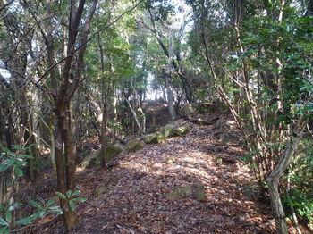 P1360104巡視路・小伐採ピークへの登り.JPG