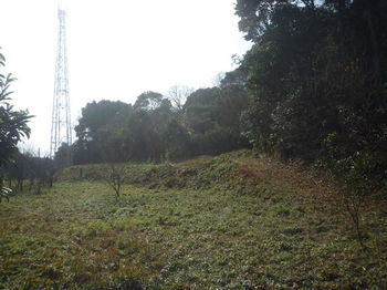 P1360156下降地点付近(逆方向)・通信塔.JPG