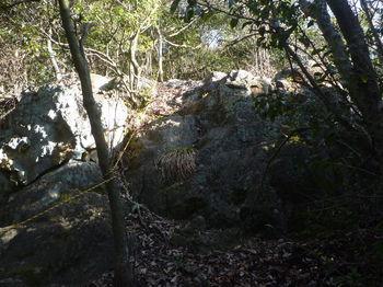 P1360261岩・ロープ.JPG