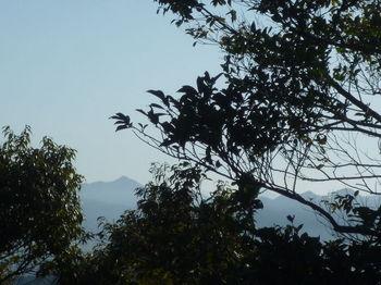 P1360280東側樹間展望(凌厳寺山.JPG