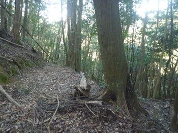 P1360296鞍部から左方向の山道.JPG