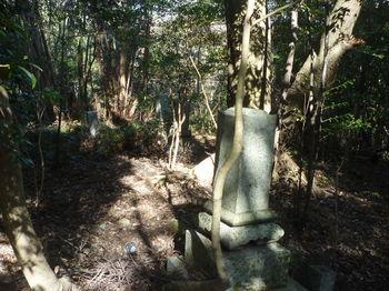 P1360308放置された墓地.JPG