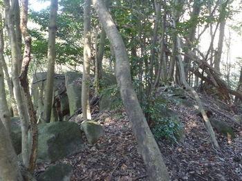 P1360319小岩の重なり.JPG