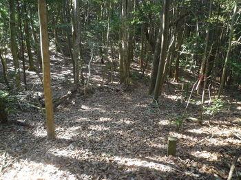 P1360363宛木峠・美保コース分岐.JPG
