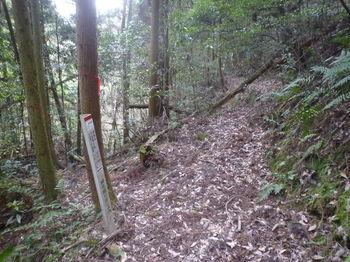 P1360512巡視路分岐・標柱(左へ).JPG