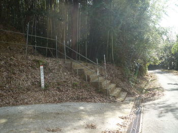 P1360532登山口・コン段・標柱.JPG