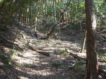 P1360603登山道・巻き道.JPG