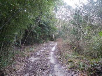 P1360662舗装林道.JPG