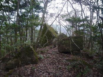 P1360719岩.JPG